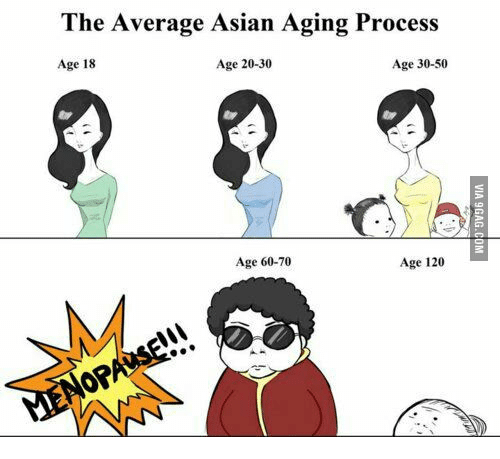 the average asian aging process age 20 30 age 30 50 age 14027344 ✅ 25 best memes about asians aging asians aging memes