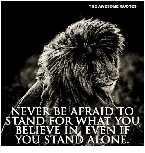 The AWESOME QUOTES EVER BE AFRAID TO STAND FOR WHAT YOU BEEIEVE IN Gorgeous Ever Awesome Quotes