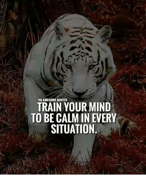 The AWESOME QUOTES TRAIN YOUR MIND TO BE CALM IN EVERY SITUATION