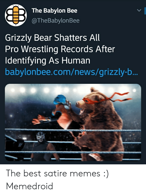 The Babylon Bee L Grizzly Bear Shatters All Pro Wrestling Records