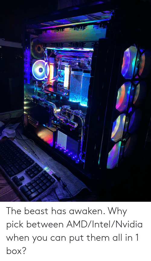The Beast Has Awaken Why Pick Between Amdintelnvidia When You Can Put Them All In 1 Box Intel Meme On Me Me