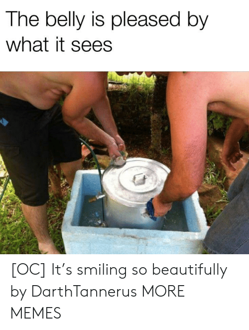 Dank, Memes, and Target: The belly is pleased by  what it sees [OC] It's smiling so beautifully by DarthTannerus MORE MEMES