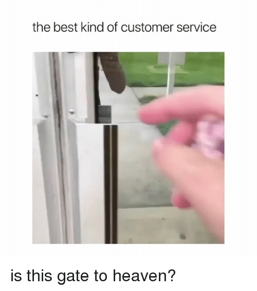 Heaven, Best, and Girl Memes: the best kind of customer service is this gate to heaven?