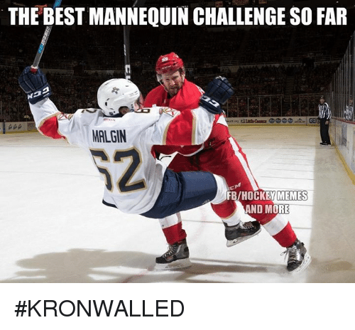 d0581cfea Hockey, Memes, and Best: THE BEST MANNEQUIN CHALLENGE SO FAR MALGIN FB/