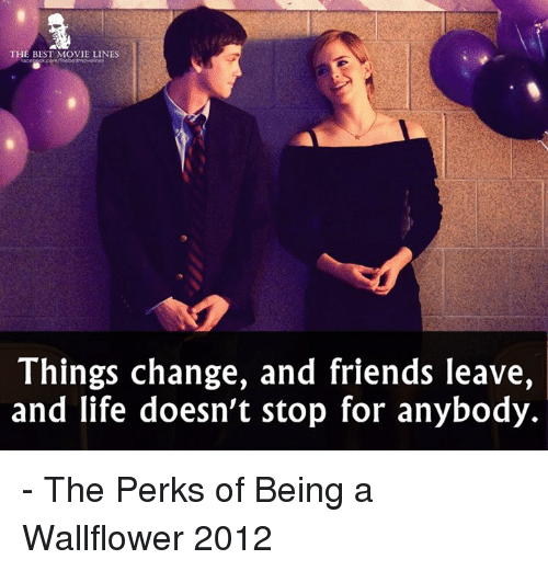 who is the friend in perks of being a wallflower