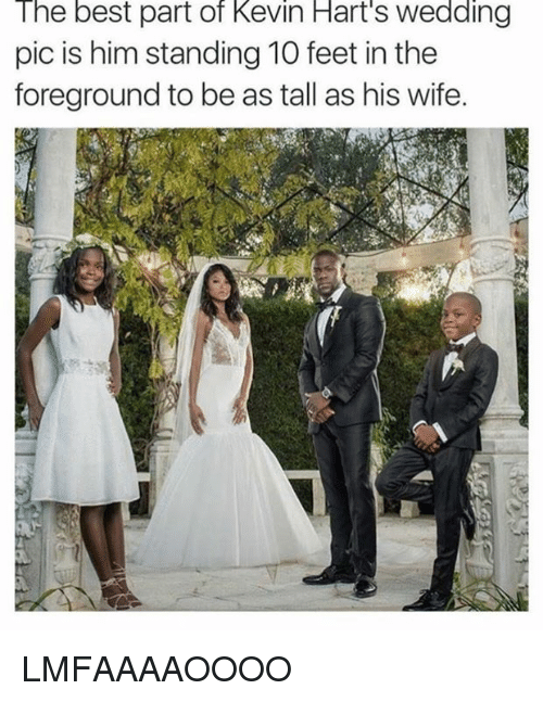 Best, Wife, and Wedding: The best part of Kevin Hart's wedding  pic is him standing 10 feet in the  foreground to be as tall as his wife. LMFAAAAOOOO