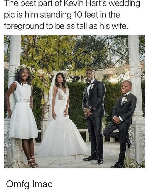 Funny, Kevin Hart, and Best: The best part of Kevin Hart's wedding  pic is him standing 10 feet in the  foreground to be as tall as his wife. Omfg lmao