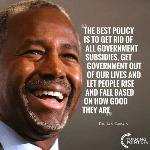 Fall, Memes, and Best: THE BEST POLICY  IS TO GET RID OF  ALL GOVERNMENT  SUBSIDIES, GET  GOVERNMENT OUT  OF OUR LIVES AND  LET PEOPLE RISE  AND FALL BASED  ON HOW GOOD  THEY ARE  DR. BEN CARSONN  TURNING  POINT USA