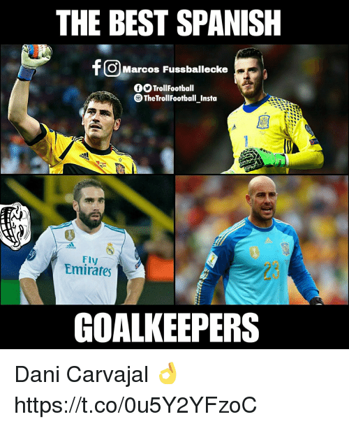 Memes, Spanish, and Best: THE BEST SPANISH  OMarcos Fussballecke  f TrollFootball  TheTrollFootball Insta  Fly  Emirates  23  GOALKEEPERS Dani Carvajal 👌 https://t.co/0u5Y2YFzoC