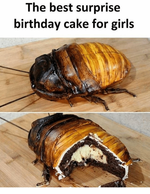Birthday, Girls, and Memes: The best surprise  birthday cake for girls