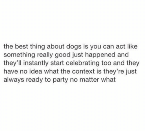 Dank, Dogs, and Party: the best thing about dogs is you can act like  something really good just happened and  they'll instantly start celebrating too and they  have no idea what the context is they're just  always ready to party no matter what