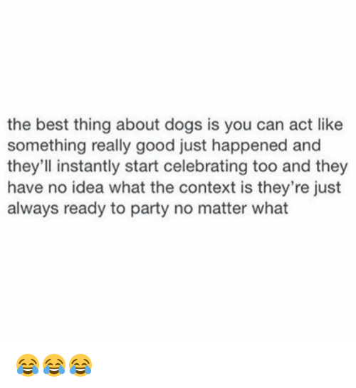 Dogs, Party, and Best: the best thing about dogs is you can act like  something really good just happened and  they'll instantly start celebrating too and they  have no idea what the context is they're just  always ready to party no matter what 😂😂😂