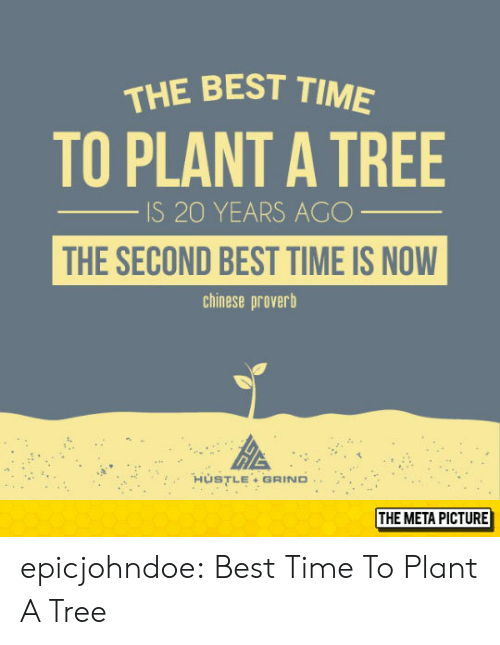 Tumblr, Best, and Blog: THE BEST TIM  TO PLANT A TREE  S 20 YEARS AGC  THE SECOND BEST TIME IS NOW  chinese proverb  HùSTLE + GRIND..  THE META PICTURE epicjohndoe:  Best Time To Plant A Tree
