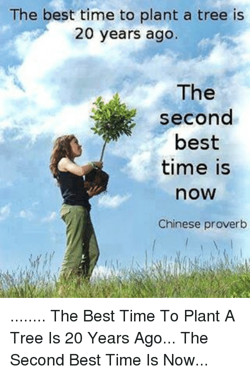 The Best Time To Plant A Tree Is 60 Years Ago The Second Best Time Inspiration Best Proverb With Picture