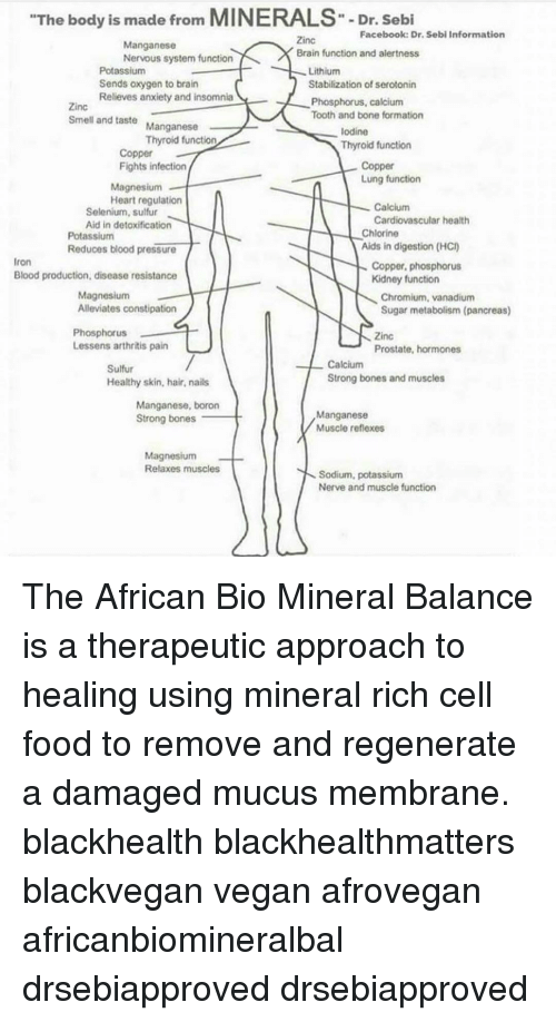 The Body Is Made From MINERALS-Dr Sebi Facebook Dr Sebi