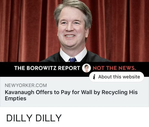 The BOROWITZ REPORTNOT THE NEWS I About This Website