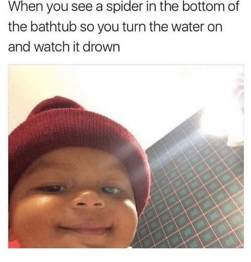 Dank, Spider, and Watch: the  bottom  When you see a spider in of  the bathtub so you turn the water on  and watch it drown