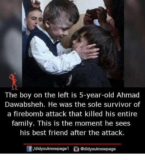 Best Friend, Family, and Memes: The boy on the left is 5-year-old Ahmad  Dawabsheh. He was the sole survivor of  a firebomb attack that killed his entire  family. This is the moment he sees  his best friend after the attack.  f/didyouknowpagel@didyouknowpage