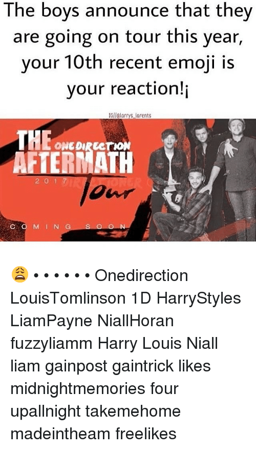 the boys announce that they are going on tour this year your 10th