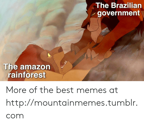 Amazon, Memes, and Tumblr: The Brazilian  government  The amazon  rainforest More of the best memes at http://mountainmemes.tumblr.com