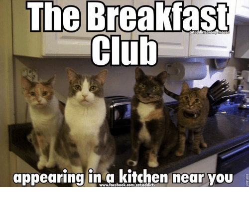 club memes and breakfast the breakfast club appearing in a kitchen near you - Kitchen Near You