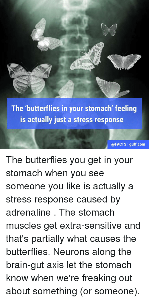 Having butterflies in stomach