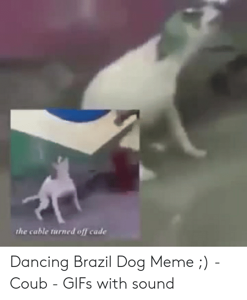 adf03599a2d0af Dancing, Meme, and Brazil: the cable turned off cade Dancing Brazil Dog Meme