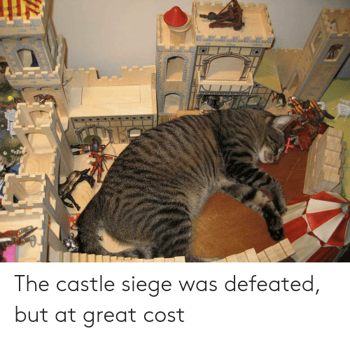 The Castle Siege Was Defeated But At Great Cost The Castle Meme On Me Me