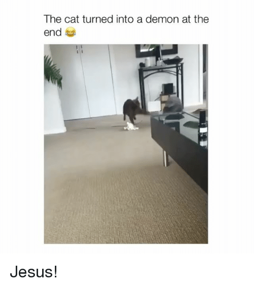 Jesus, Cat, and Demon: The cat turned into a demon at the  end Jesus!