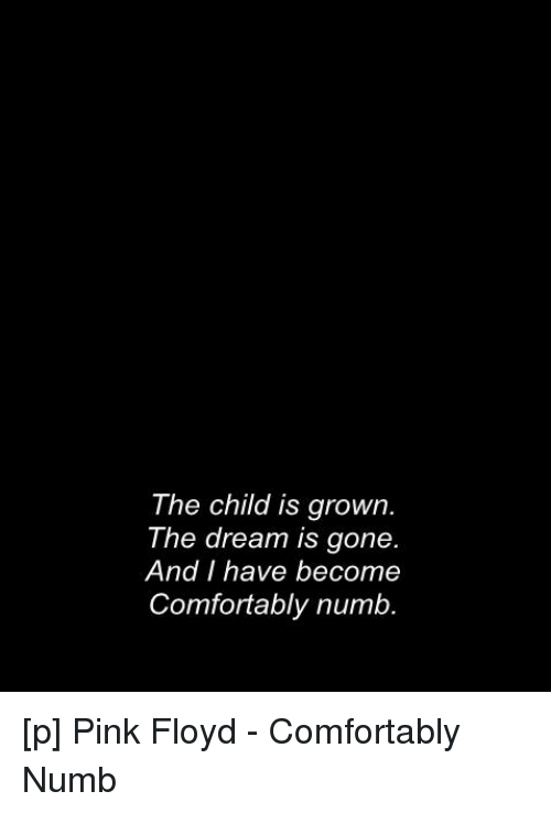 ca5a16d1 Comfortable, Pink Floyd, and Lyrics: The child is grown The dream is gone