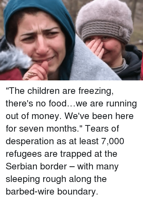 """Desperate, Memes, and Trap: """"The children are freezing, there's no food…we are running out of money. We've been here for seven months.""""  Tears of desperation as at least 7,000 refugees are trapped at the Serbian border – with many sleeping rough along the barbed-wire boundary."""
