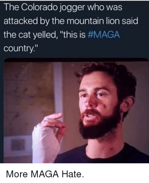 The Colorado Jogger Who Was Attacked By The Mountain Lion