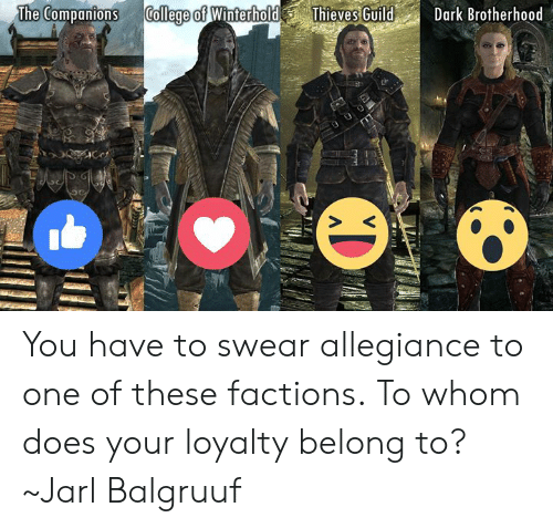 College, Memes, and To Whom: The Companions College of WinterholdThieves GuildDark Brotherhood You have to swear allegiance to one of these factions. To whom does your loyalty belong to?  ~Jarl Balgruuf