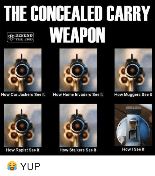 Memes, Home, and 🤖: THE CONCEALED CARRY  WEAPON  DEFEND  THE 2ND  How Car Jackers See It  How Home Invaders See It How Muggers See It  How I See it  How Rapist See lt  How Stalkers See It 😂 YUP