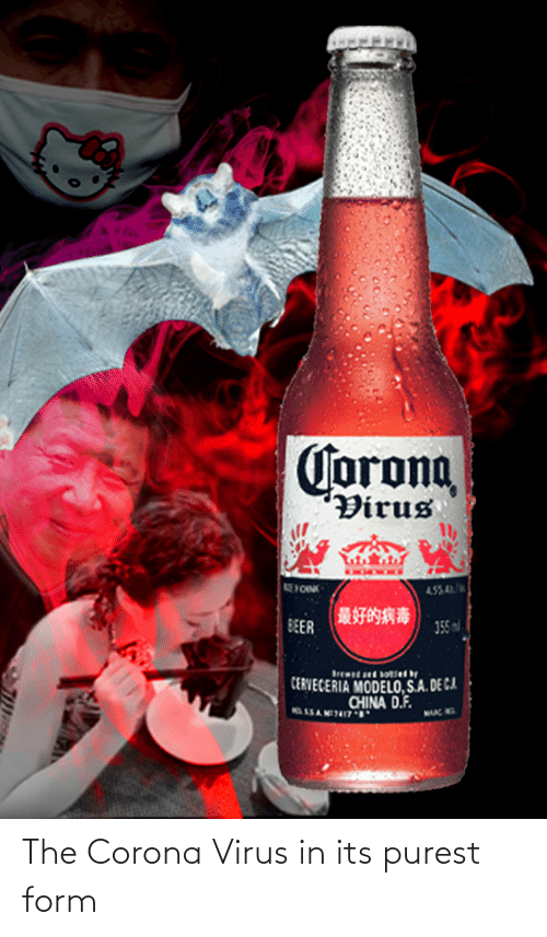 Image result for corona virus meme