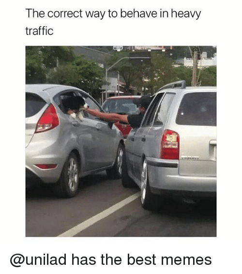 Funny, Memes, and Traffic: The correct way to behave in heavy  traffic @unilad has the best memes