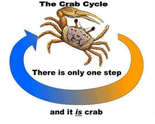There Is Only One Step And It Is Crab