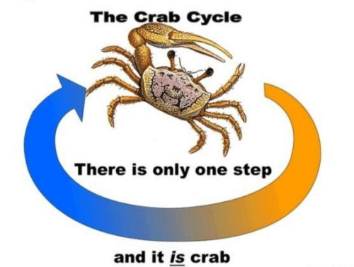 Only One, Step, and Crab: The Crab Cycle  There is only one step  and it is crab