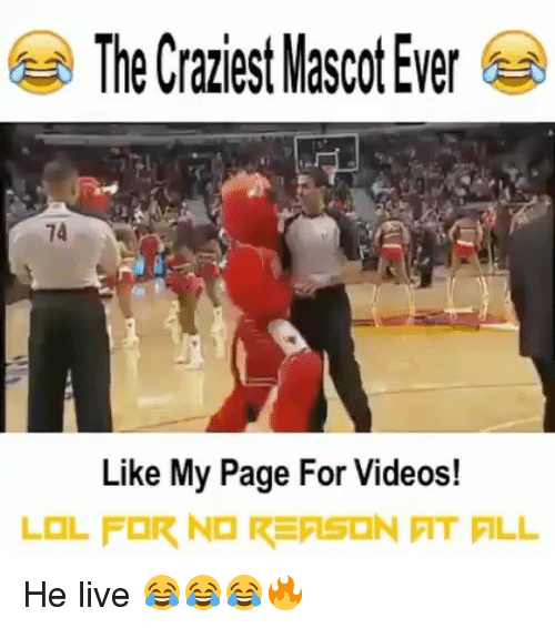 Memes, Videos, and Live: The Craziest Mascot Ever  74  Like My Page For Videos! He live 😂😂😂🔥