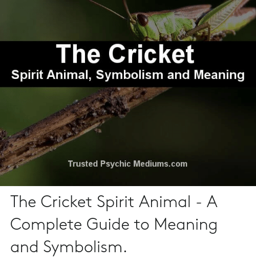 The Cricket Spirit Animal Symbolism and Meaning Trusted