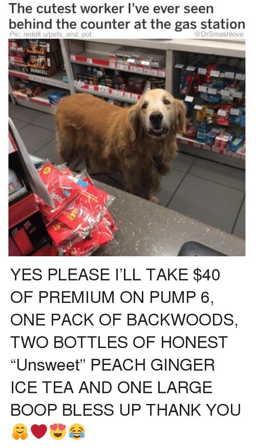 "Bless Up, Memes, and Reddit: The cutest worker I've ever seen  bernind the counter at the gas station  Pic: reddit u/pets and pot  @DrSmashlove YES PLEASE I'LL TAKE $40 OF PREMIUM ON PUMP 6, ONE PACK OF BACKWOODS, TWO BOTTLES OF HONEST ""Unsweet"" PEACH GINGER ICE TEA AND ONE LARGE BOOP BLESS UP THANK YOU 🤗❤️😍😂"