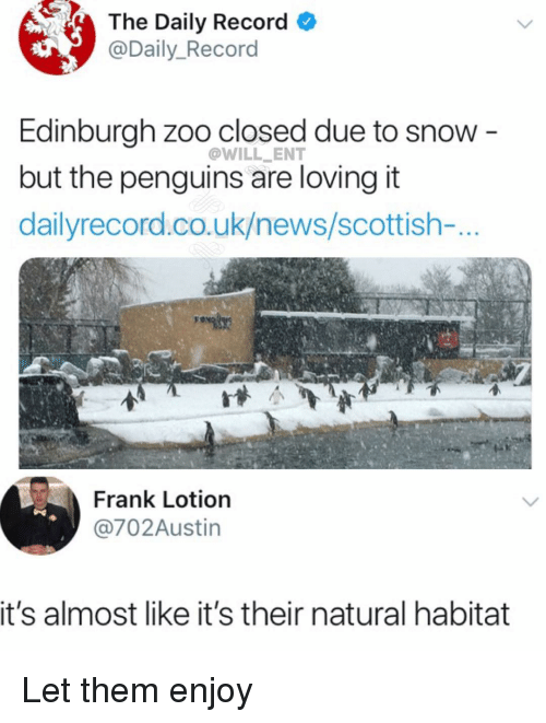 Memes, News, and Penguins: The Daily Record  @Daily_Record  Edinburgh zoo closed due to snow -  but the penguins are loving it  dailyrecord.co.uk/news/scottish-...  @WILL ENT  Frank Lotion  @702Austin  it's almost like it's their natural habitat Let them enjoy