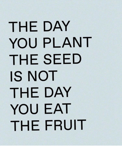 Fruit, Day, and Seed: THE DAY  YOU PLANT  THE SEED  IS NOT  THE DAY  YOU EAT  THE FRUIT