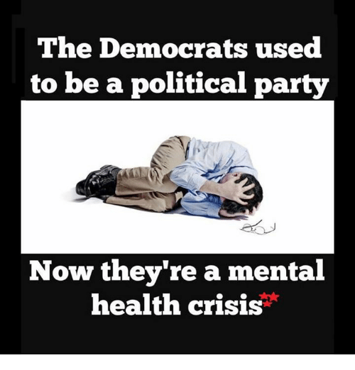 Memes, 🤖, and Mental Health: The Democrats used  to be a political party  Now they're a mental  health crisis