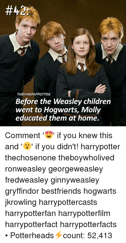 Gryffindor, Memes, and Molly: THE DIARYOFPOTTER  Before the Weasley children  went to Hogwarts, Molly  educated them at home. Comment '😍' if you knew this and '😮' if you didn't! harrypotter thechosenone theboywholived ronweasley georgeweasley fredweasley ginnyweasley gryffindor bestfriends hogwarts jkrowling harrypottercasts harrypotterfan harrypotterfilm harrypotterfact harrypotterfacts • Potterheads⚡count: 52,413