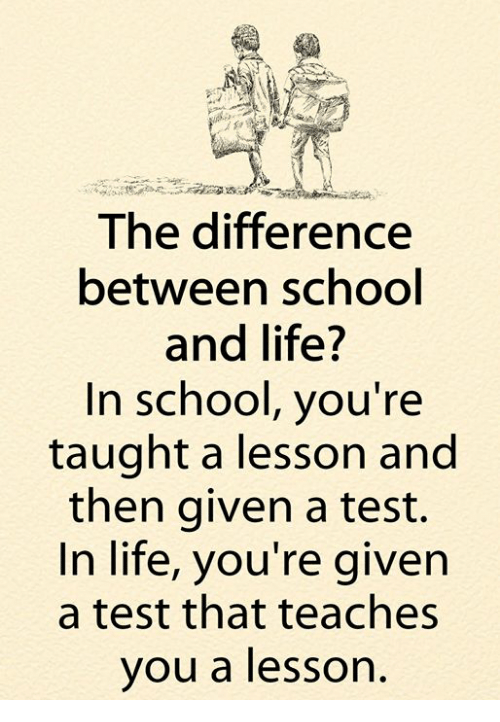 the difference between life and school