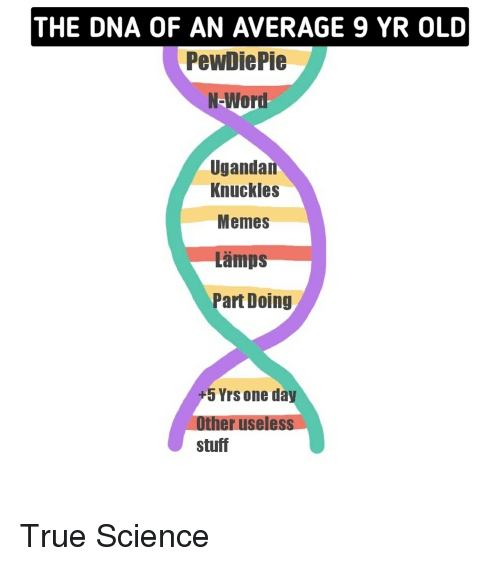 Memes, True, and Science: THE DNA OF AN AVERAGE 9 YR OLD  PewDiePie  N-Word  Ugandan  Knuckles  Memes  Lämps  Part Doing  +5 Yrs one day  Other useless  stuff