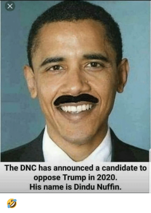 Trump, Dnc, and Name: The DNC has announced a candidate to  oppose Trump in 2020.  His name is Dindu Nuffin. 🤣
