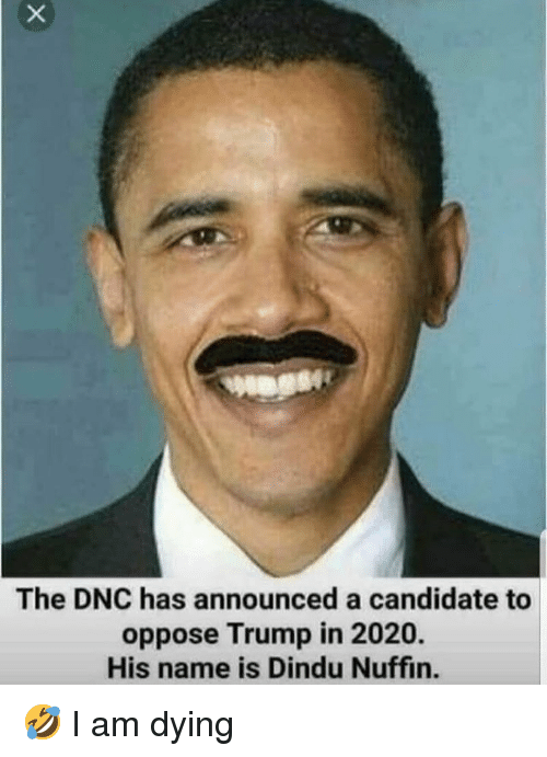 Memes, Trump, and 🤖: The DNC has announced a candidate to  oppose Trump in 2020.  His name is Dindu Nuffin. 🤣 I am dying