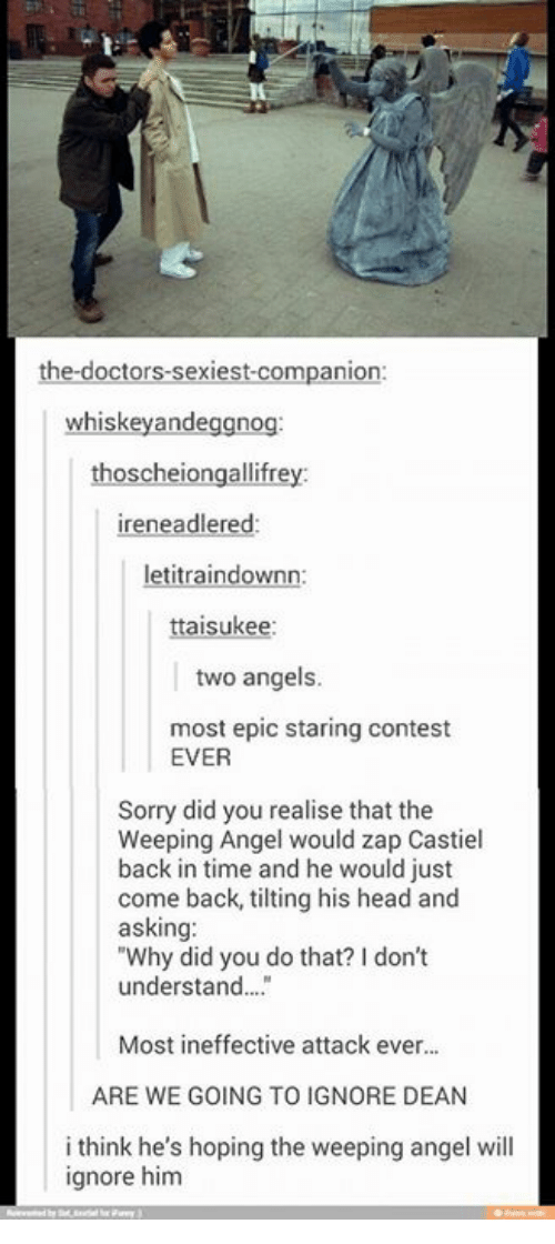 """Head, Memes, and Sorry: the doctors sexiest companion:  whiskey andeggnog  scheiongallifr  ireneadlered:  letitraindownn:  suke  two angels  most epic staring contest  EVER  Sorry did you realise that the  Weeping Angel would zap Castiel  back in time and he would just  come back, tilting his head and  asking:  """"Why did you do that? don't  understand...  Most ineffective attack ever...  ARE WE GOING TO IGNORE DEAN  i think he's hoping the weeping angel will  ignore him"""